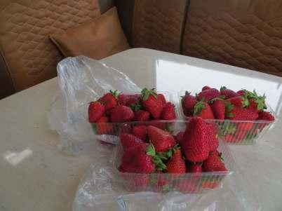 Dinner, €5 s'berries